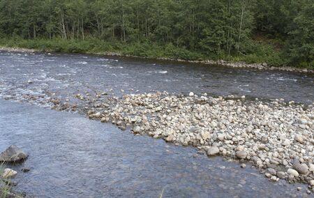 salmonidae: Norwegian river Stock Photo