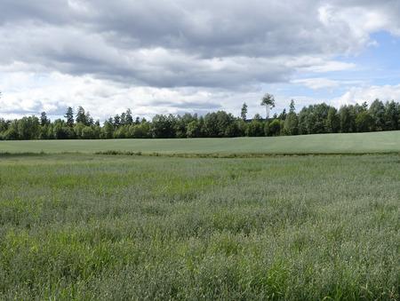 outbuilding: Farmland