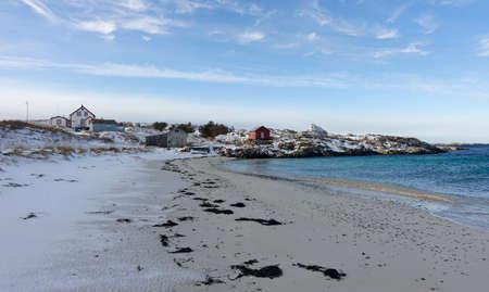 blue fish: Norwegian coastline