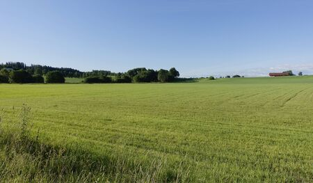 Farmland Stok Fotoğraf - 87325950