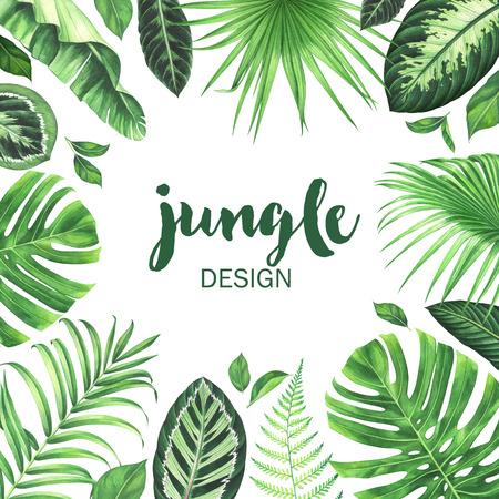 Watercolor tropical frame. Hand drawn jungle background. Standard-Bild