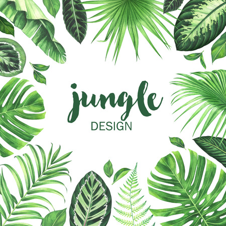 Watercolor tropical frame. Hand drawn jungle background. Stock fotó