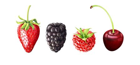 Hand drawn watercolor illustration of berries. Strawberry, blackberry, raspberry, cherry isolated on white background.