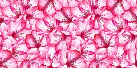 Pink cherry blossom seamless pattern. Watercolor floral background. Stock Photo - 129409039