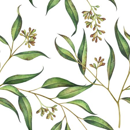 Seamless floral pattern with eucalyptus branches. Watercolor hand drawn illustration. Standard-Bild