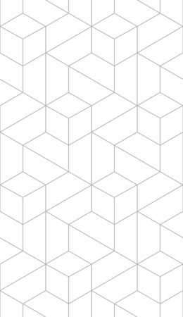 Vector seamless cubic hexagon pattern. Modern stylish thin linear monochrome texture. Illustration