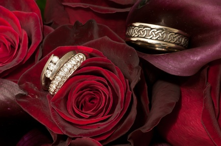 Bride and Groom Wedding Rings Amongst the Roses