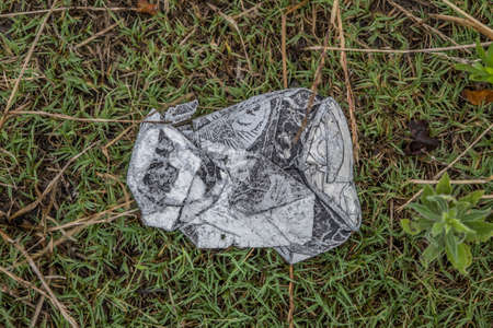 A weathered and smashed aluminum beverage can laying on the grass outdoors polluting the environment 免版税图像