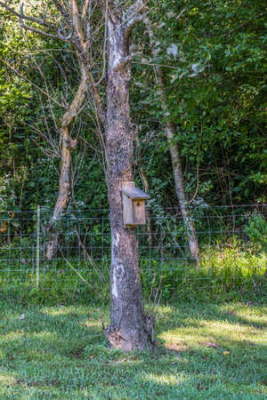 A single birdhouse for small birds hanging on a tree in the shade at a park with the woodlands behind the wire fence in the background on sunny day in late summertime 스톡 콘텐츠
