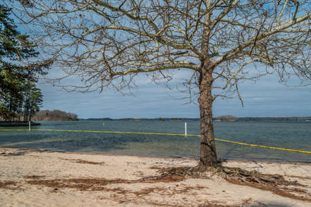 Beach with a tree by the swim area with a yellow boundary floating line around the depth markers in the shallow water at Lake Lanier in Georgia on a bright sunny day in early spring Stockfoto