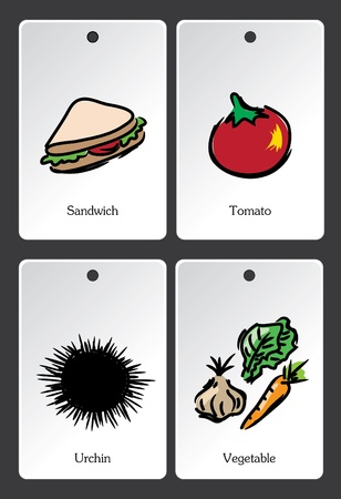 Food illustration vocabulary card