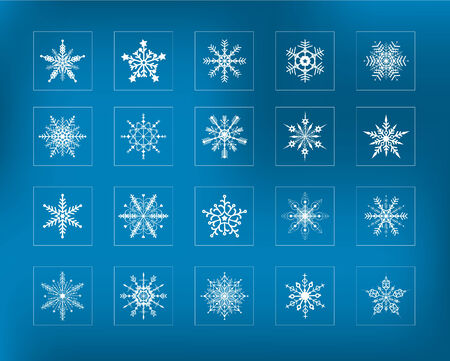 Set of 20 Snowflakes Vector
