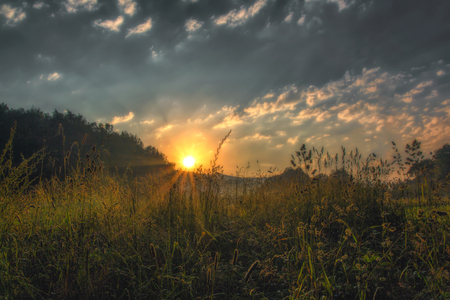Sunrise on a meadow in the early morning 版權商用圖片