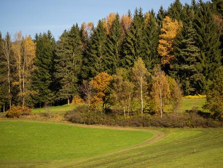 Fields, meadows, forest, wonderful landscape