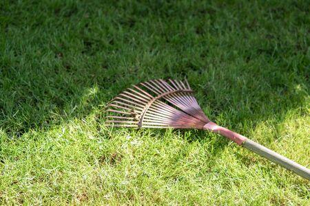 Rake tool lies in the garden
