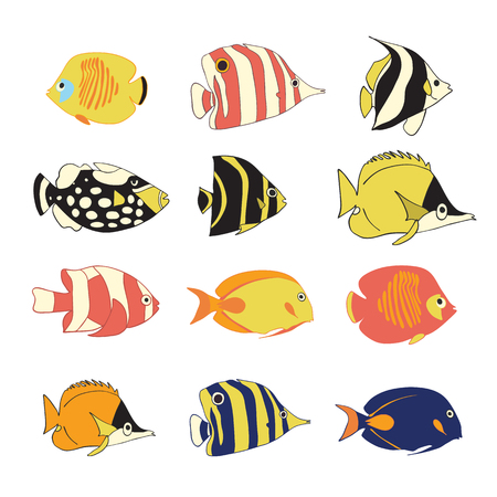 Vector icon set tropical reef fishes. Vector isolated exotic fish characters. Colorful Butterflyfish, Clown Triggerfish, Damsel, Anemonefish, Clownfish, Angelfish. Hand drawn marine underwater animals Stock Photo