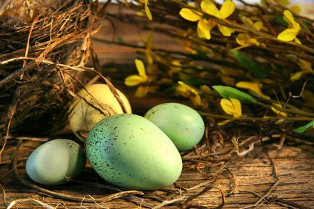 Little Easter eggs lying on old barn wood Stock Photo