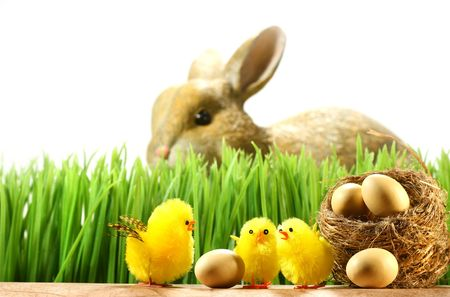 Three little chicks in the grass with eggs Stock Photo - 2533390