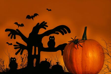 Spooky halloween tree with pumpkin Stock Photo