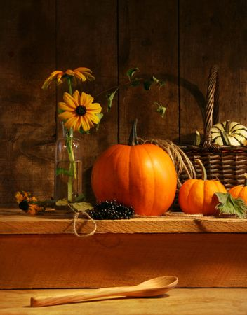 gourds: Fall still life with flowers and gourds