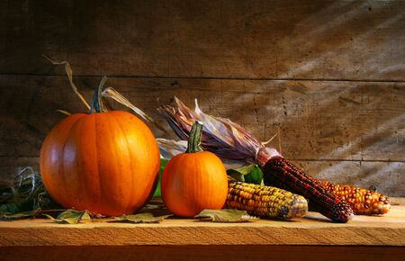 Pumpkins in the shed on a shelf with pumpkins and corn photo