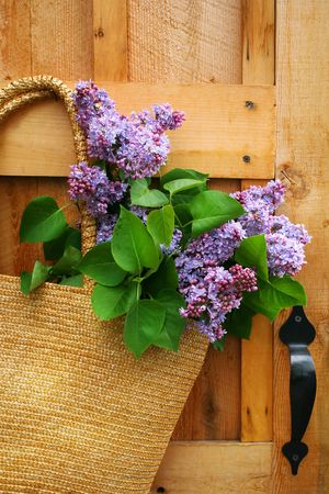 Lilacs in a straw purse hanging on an old door