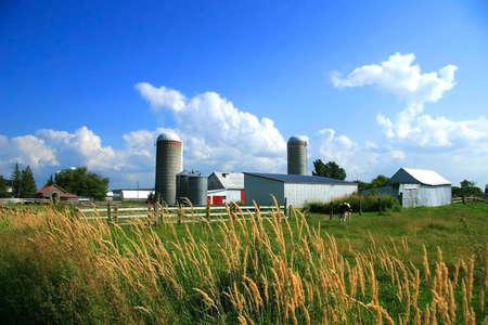 Trabajo agrícola en las zonas rurales de Quebec, Canadá  Foto de archivo - 2564370