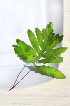 Table napkin and green fern on wooden table photo