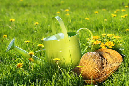 Watering can in the grass with old straw hat photo