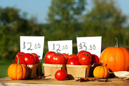 Tomatoes for sale on a sunny day photo