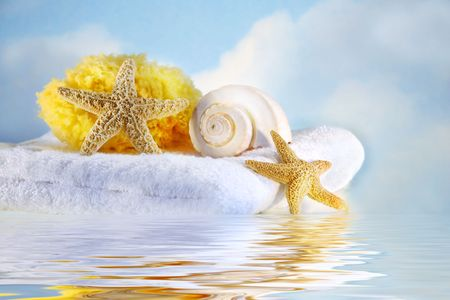 Sea shells and towel with water reflection photo