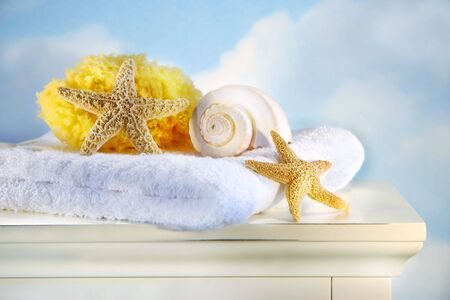 Sea shells,towel and sponge on cabinet photo
