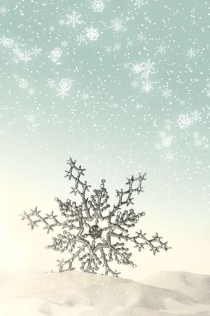 iceflower: Spumanti fiocco di neve nella neve con sfondo bianco  Archivio Fotografico