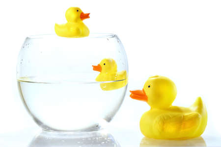 Rubber ducks in fish bowl against white background photo