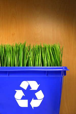 papelera de reciclaje: Blue papelera de reciclaje con la hierba dentro de la madera contra el fondo
