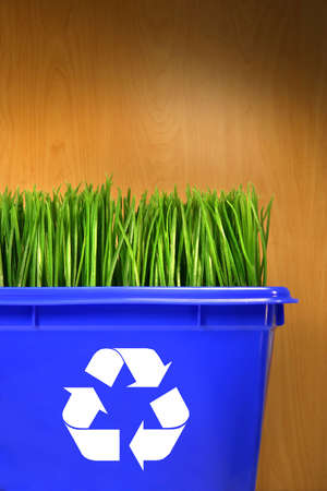 biodegradable: Blue recycle bin with grass inside against wood background