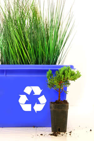 Tall grass inside recycle bin against white background Stock Photo - 2834096