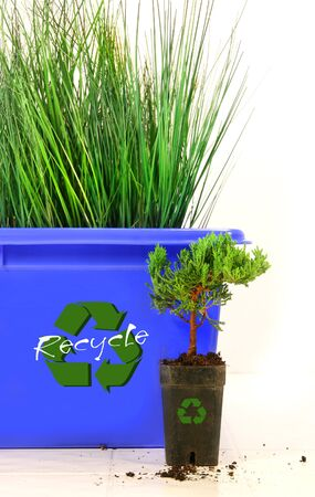 Tall grass inside recycle bin against white background photo