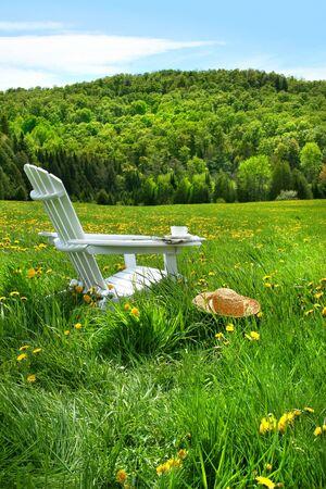 silla de madera: Relajarse en una silla de verano en un campo de hierba alta en un d�a soleado
