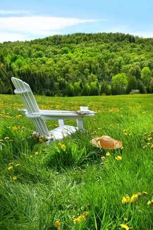 adirondack chair: Relaxing on a summer chair in a field of tall grass on a sunny day