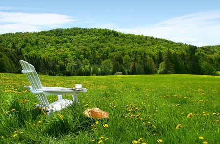 White adirondack chair in a field of tall grass on a sunny day  Stock Photo - 3097076