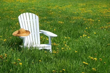 White chair with straw hat in a summer field of flowers photo