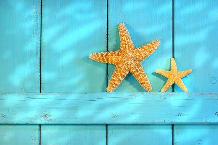 caracolas de mar: Starfish en una antigua puerta de obturación rústico