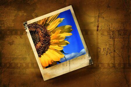 Old polaroid against grunge background photo