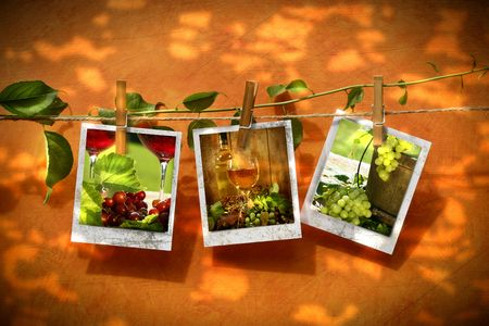 Pictures with vine pinned on clothesline with summer leaf reflection photo