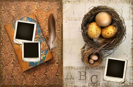Old books with bird nests and photos on grunge background photo