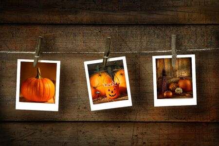 Halloween photos on distressed wood  Stock Photo - 3621863
