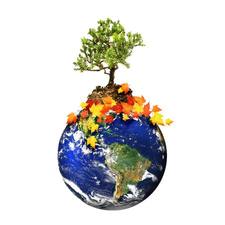 Earth with a tree isolated over a white background/ Environmental concept Stock Photo - 3632701