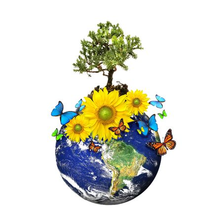 Earth with a tree and flowers isolated over a white background/ Environmental concept Stock Photo - 3632707