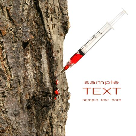 warming therapy: Syringe inserted into tree trunk on white Environmental conservation issues Stock Photo
